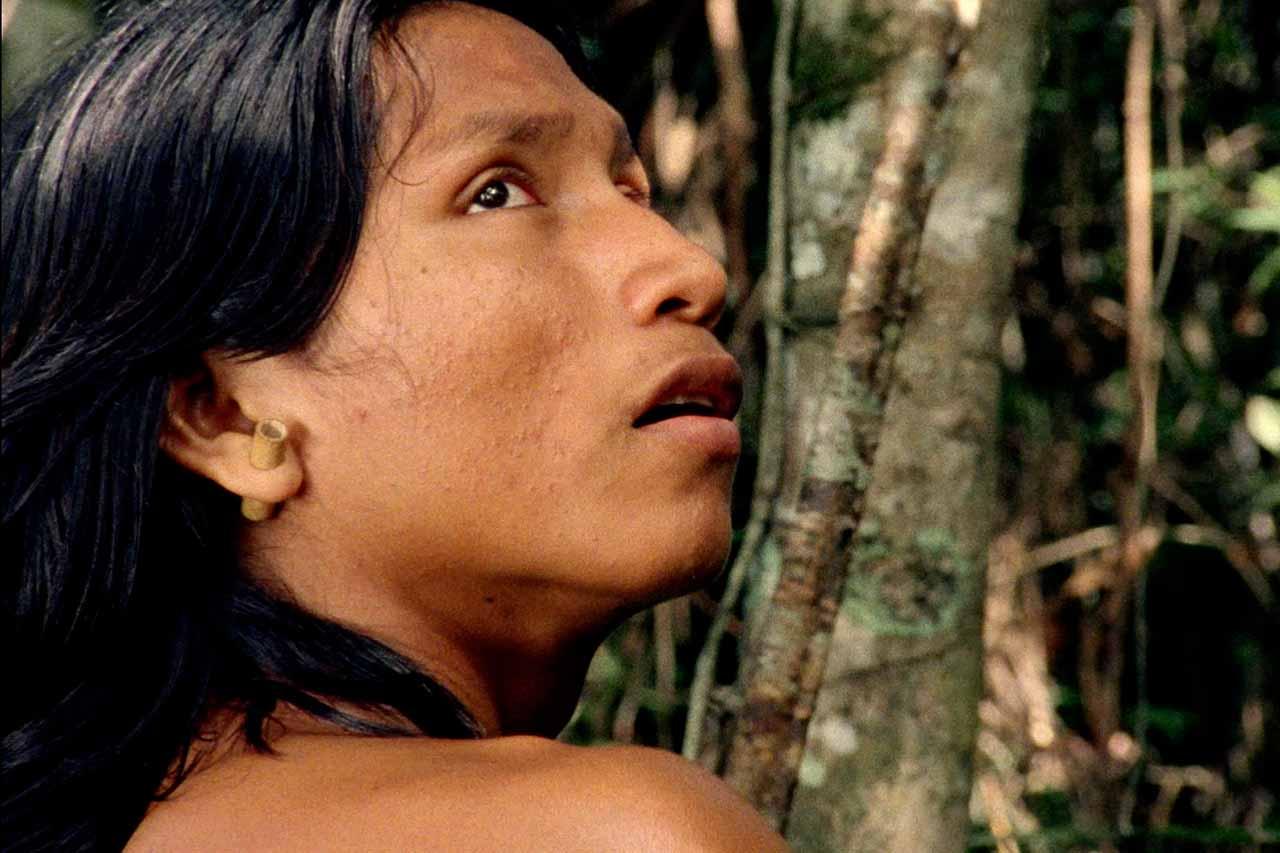 Crítica El canto de la selva