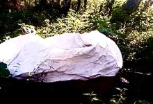 Photo of Se agrava fenómeno de asesinato de mujeres en Tabasco