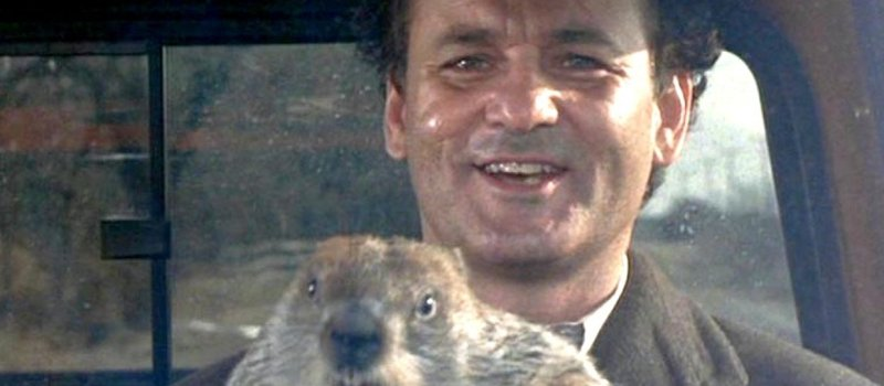 Bill Murray Groundhog Driving