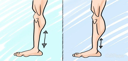 high and low calf muscle