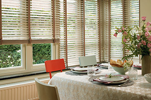 Style Controliss Blinds News
