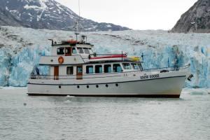Snowgoose_Glacier
