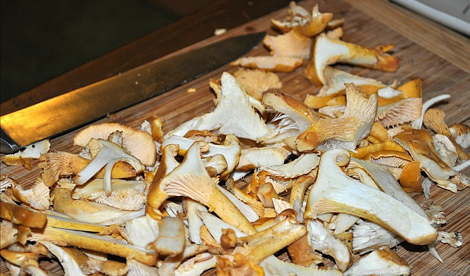 Chantrelles_Cut