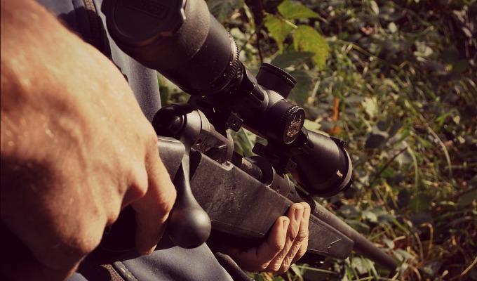 Rifle_Dusk