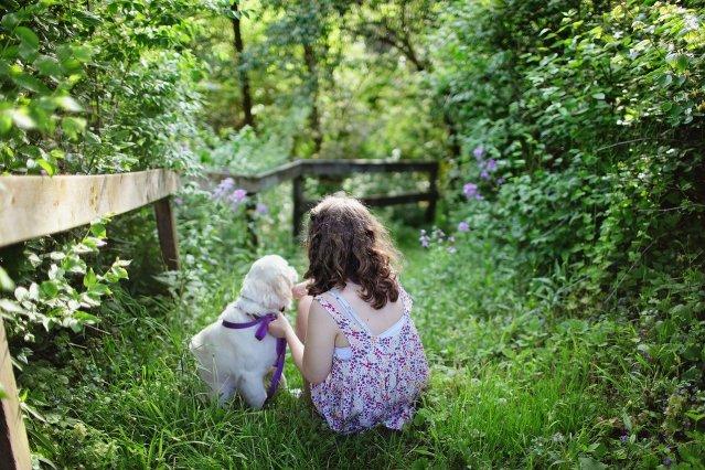 child, dog, pet