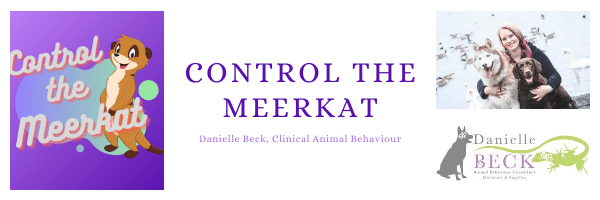 Control The Meerkat – Consultation; Lead Reactivity (6 months)