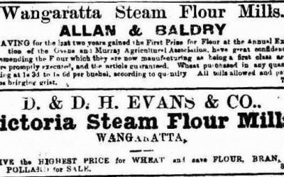 Trove Tuesday – Wangaratta 1863 – Part 1