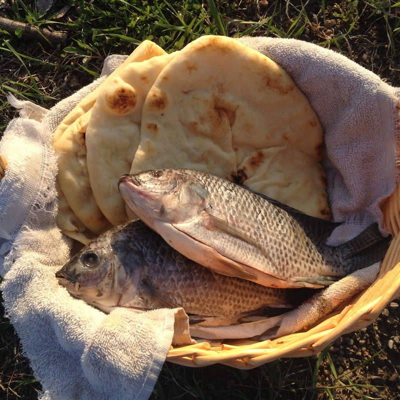 """Loaves and Fishes Basket"" photo  2017 by Matt Philleo"