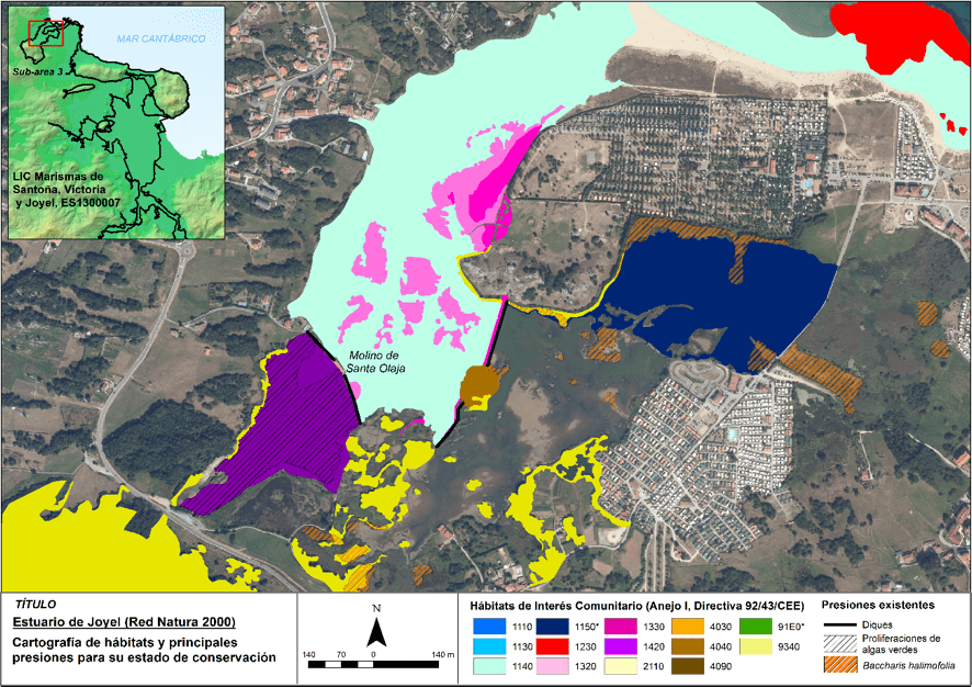 Hábitats de interés comunitario presentes en el estuario de Joyel