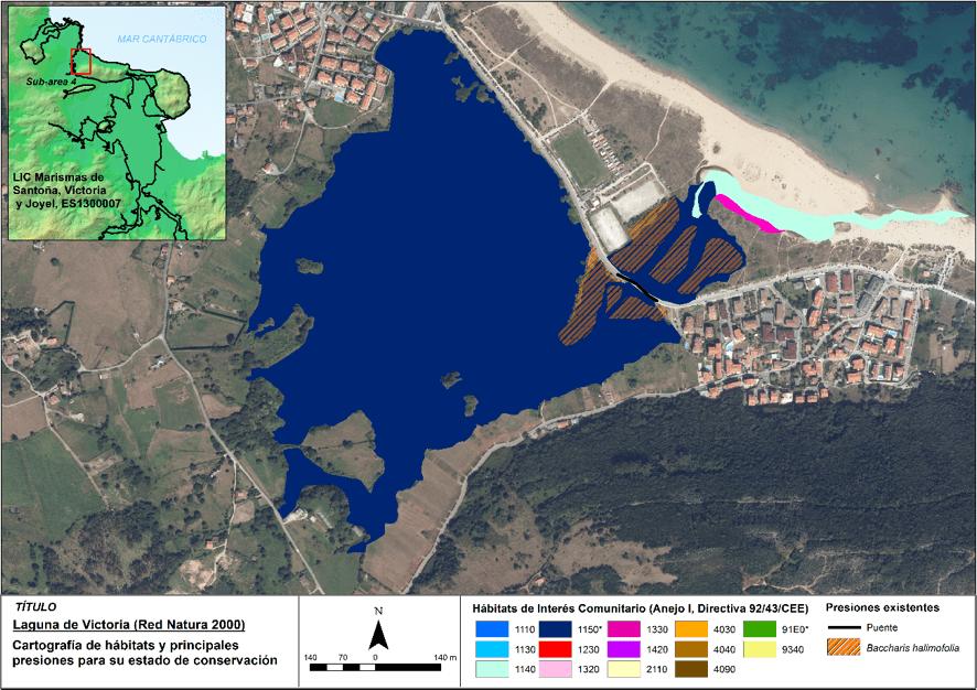 Hábitats de interés comunitario presentes en la laguna de Victoria