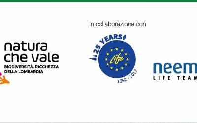 El proyecto CONVIVE LIFE participará en las reuniones sobre especies invasoras organizadas por el Programa LIFE y la región de Lombardía