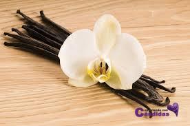 vainilla edulcorante natural sustitutos del azucar para candidiasis