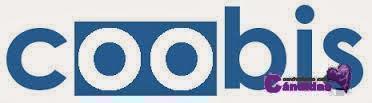 Añade publicidad con Coobis