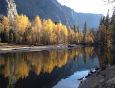merced_river_reflect_4x5-25
