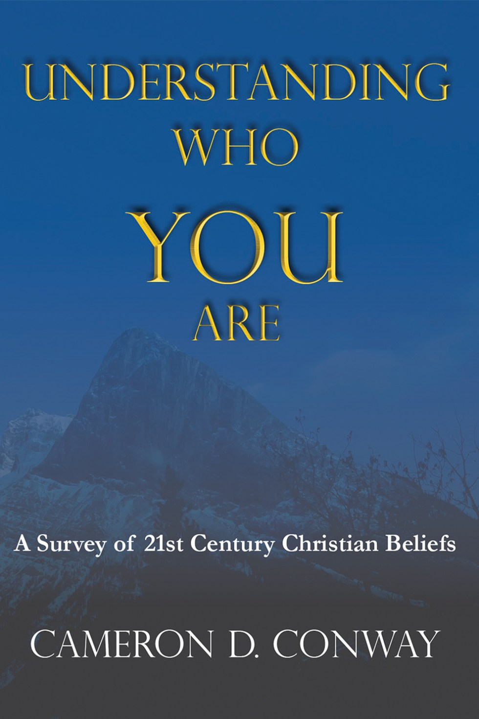 Understanding Who You Are: A Survey of 21st Century Christian Beliefs by Cameron Conway