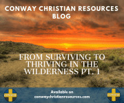 From Surviving to Thriving in the Wilderness Pt. 1