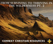From Surviving to Thriving in the Wilderness Pt. 2