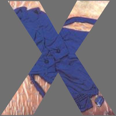 CoverX2036
