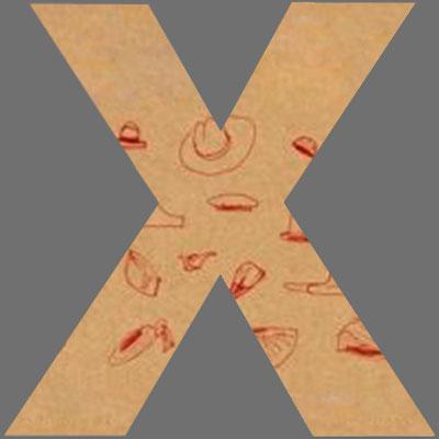 CoverX2148