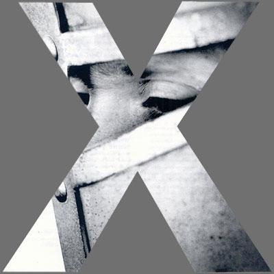 CoverX2415