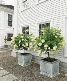 Gorgeous Front Yard Courtyard Landscaping Ideas 33