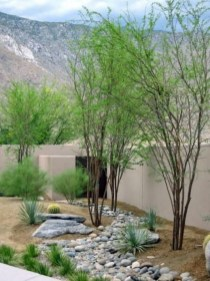 Brilliant Rock Garden Landscaping Ideas For Front Yard 57