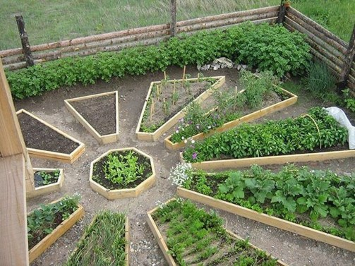 Best Ideas To Growing Vegetable Garden 26
