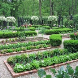 Fancy Garden Bed Borders Ideas For Vegetable And Flower 11