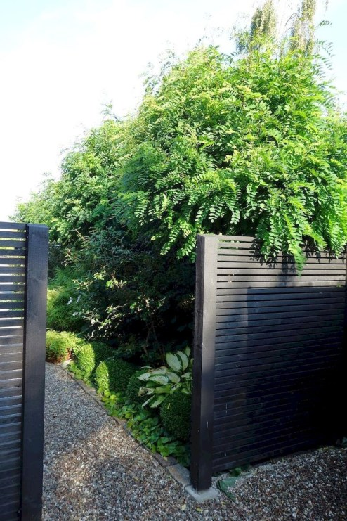 Gorgeous Black Wooden Fence Design Ideas For Frontyards 04