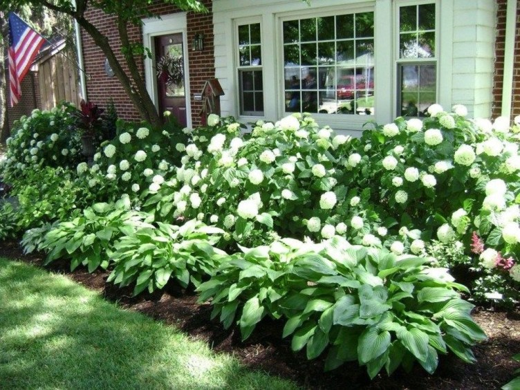 Attractive Border Garden Ideas To Your Landscaping Edging 42