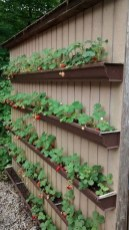 Comfy Diy Raised Garden Bed Ideas That Looks Cool 32