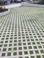 Unordinary Diy Pavement Molds Ideas For Garden Pathway To Try 29