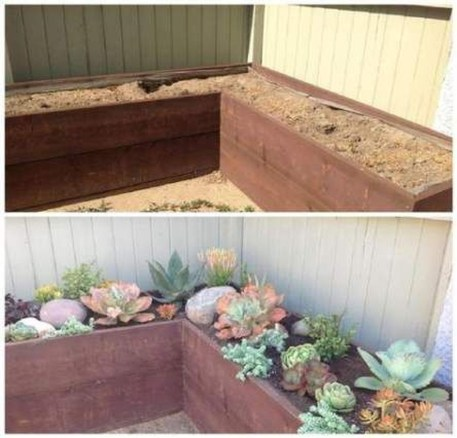 Awesome Succulent Garden Ideas In Your Backyard 36