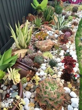 Awesome Succulent Garden Ideas In Your Backyard 41