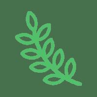 about-leaf