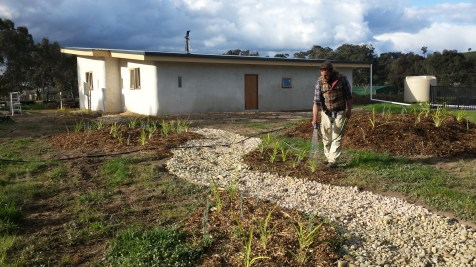 Matty watering in the newly planted seedlings