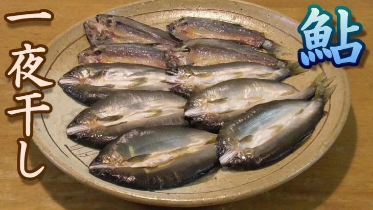 鮎の一夜干し作ってみた。うまいぞ。 ピチットを使って簡単干物。男の料理。レシピ。