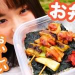 【お弁当作り】簡単おいしい焼き鳥のり弁を作ってピクニックへ!