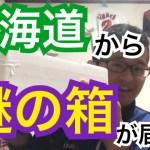 【一人暮らし料理】北海道から謎の箱が届いた