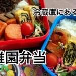 【お弁当作り】冷蔵庫にあった物で、簡単・幼稚園弁当🍱2児ママパート主婦