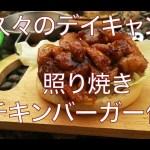 【照り焼きチキン】 デイキャンプ / スベア123r / ソロキャン / 焚火