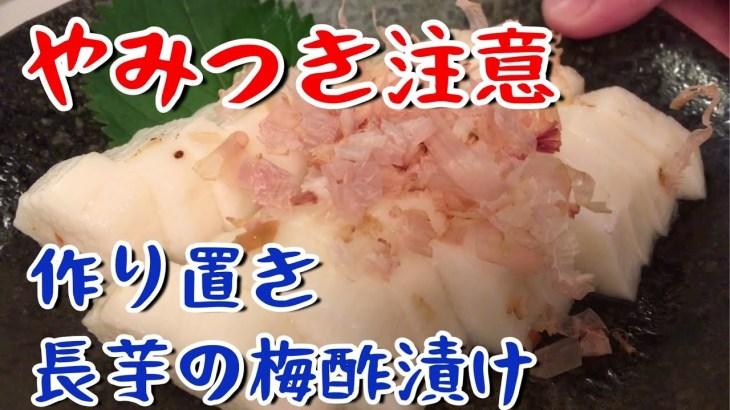 【おつまみ】やみつき注意!長芋の梅酢漬け!【料理動画】【作り置き】【節約】【やみつき】