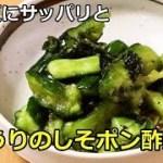 【夏にピッタリ・さっぱりかんたん料理】きゅうりのしそポン酢漬け