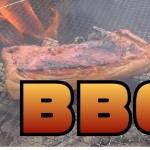 【アウトドア企画】デイキャンプでBBQをしたら!絶品料理が!?