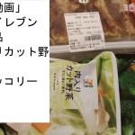 【料理動画】簡単一人暮らし独身餃子と冷凍食品カット野菜セブンで