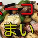 男の料理旅1053 ベーコン茄子野菜いため