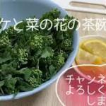 【料理動画】#簡単料理#健康レシピ#おかずプリン#プリン#茶碗蒸し#シャケ#菜の花料理#パスタ料理