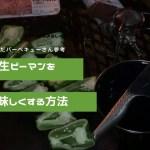 【キャンプ料理】たけだバーベキューさん参考 激ウマ生ピーマンを食す‼️