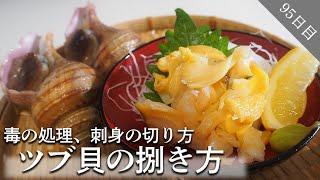 【ツブ貝の捌き方】プロがツブ貝の下処理を解説!最高に美味いツブ貝を堪能しよう!
