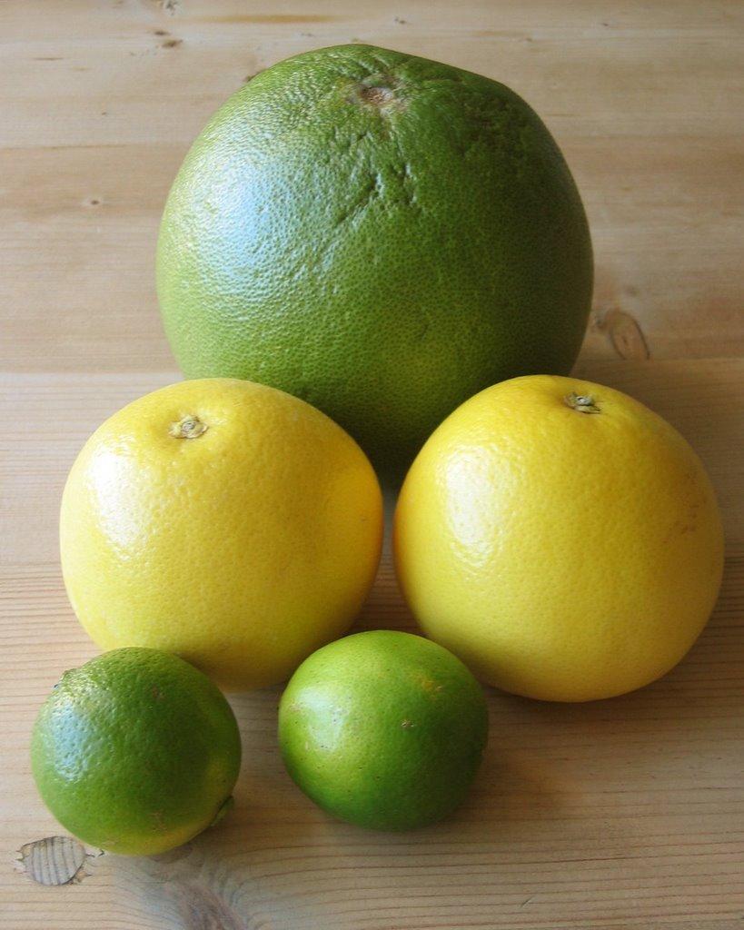 citrus and pomelo